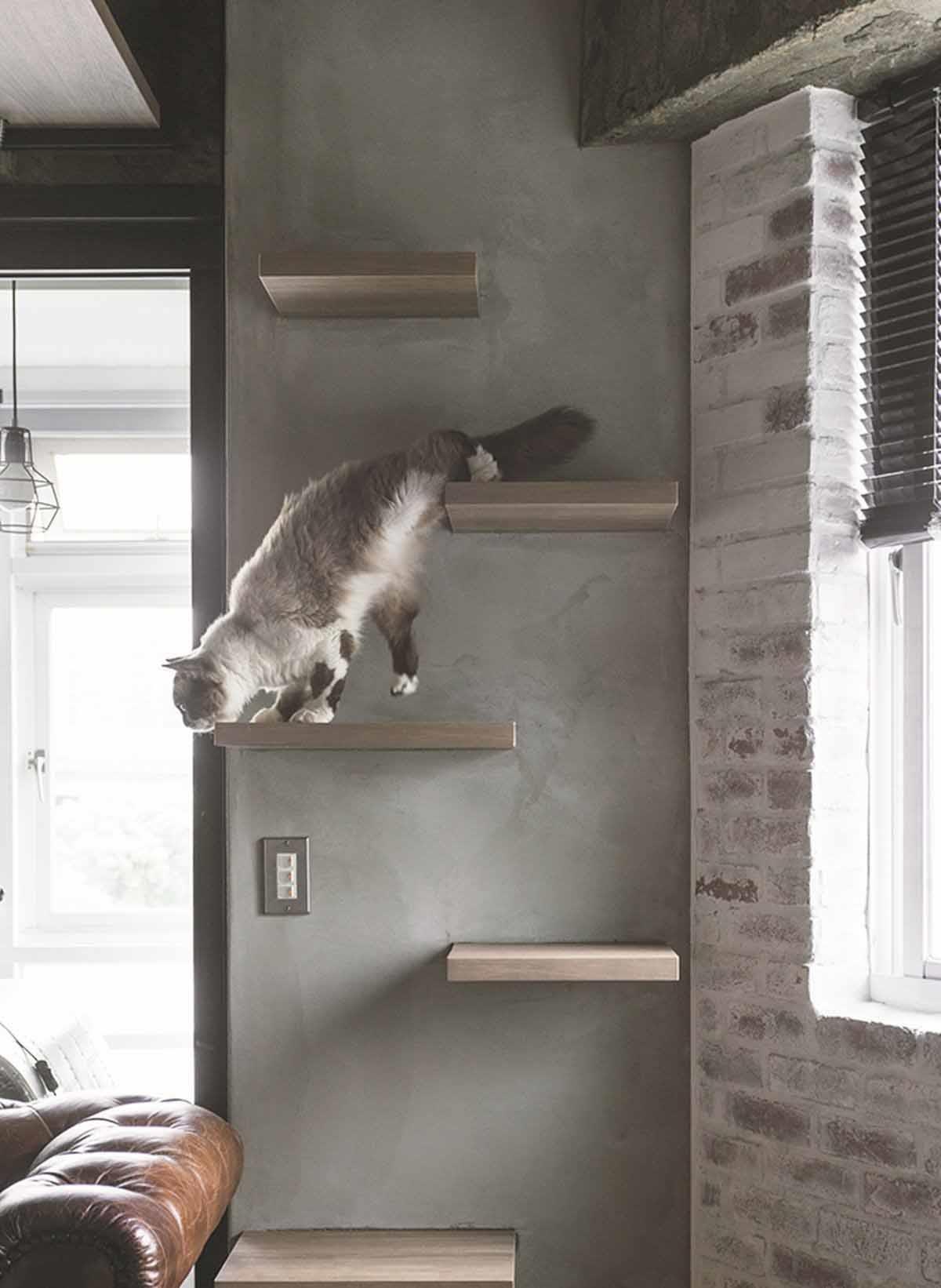 因此刻意沿窗台区规划另一个实木制作的猫跳台,让猫咪可从窗台跳到